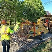 Branch Pickup Crews