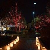 Lights of Lisle Festival