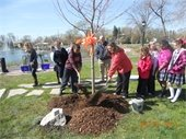 Arbor Day Celebration-Plant a Tree!