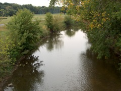 River and Bank