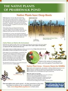 Native Plants Sign