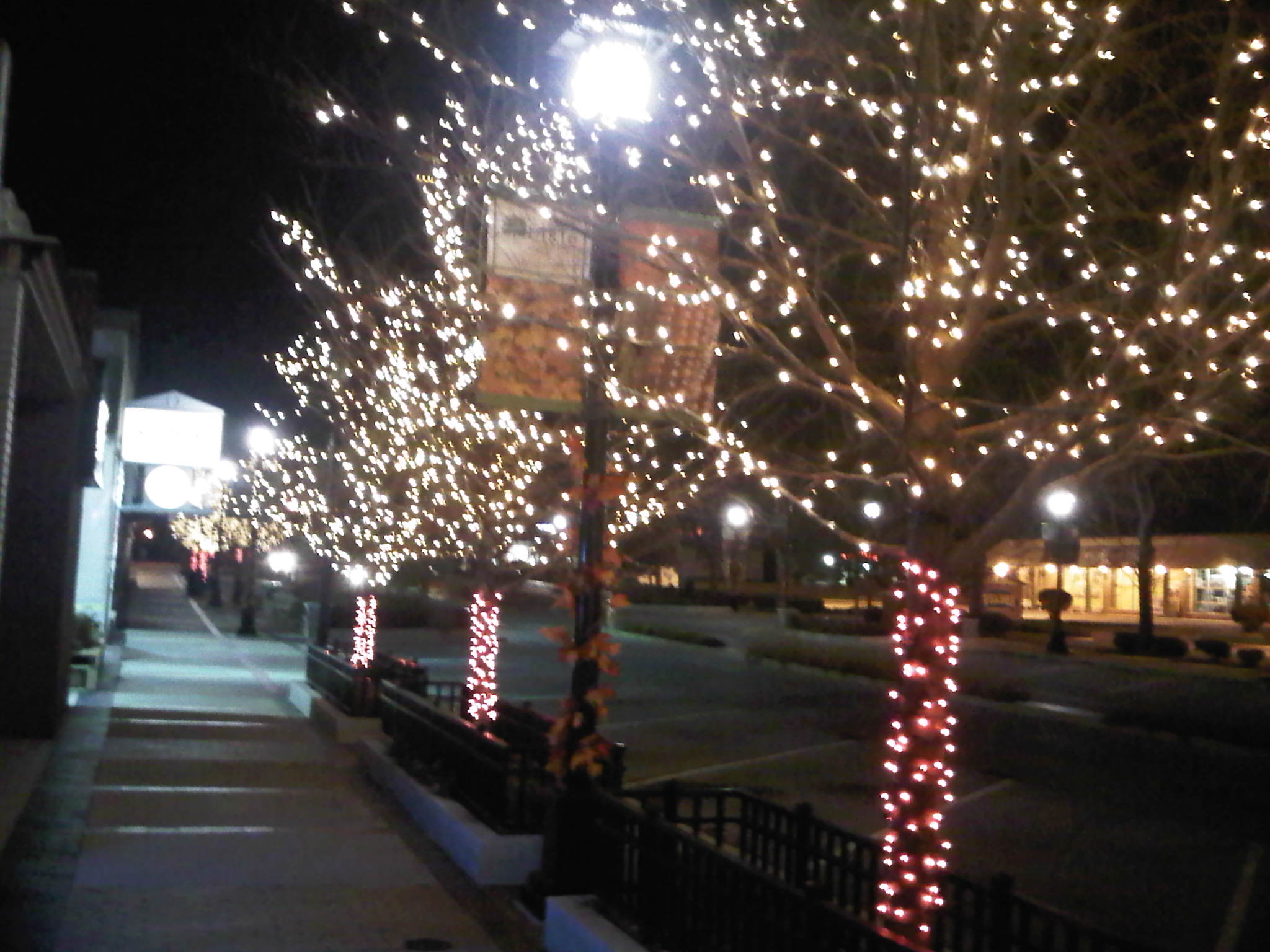 Downtown Lisle Trees Decorated